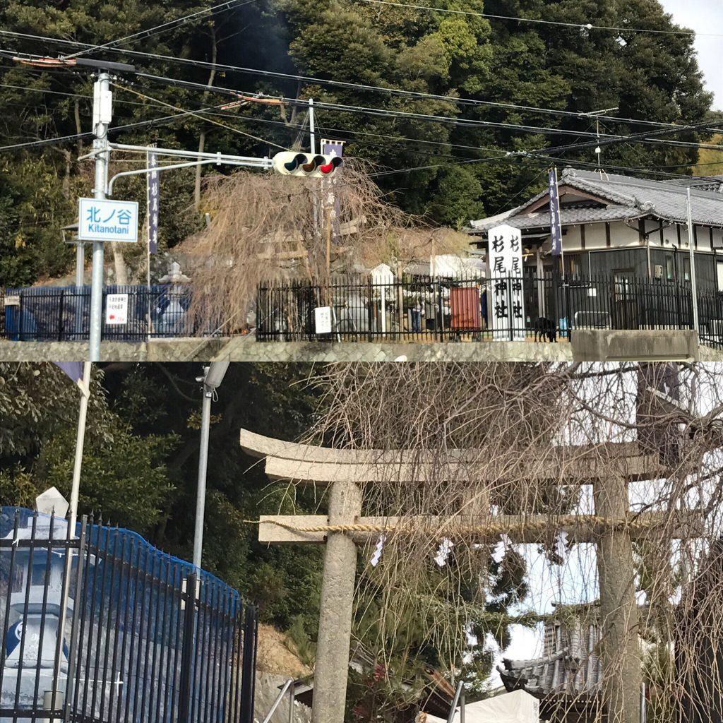 今年は戌年ですね♫(杉尾神社&天津彦根神社)