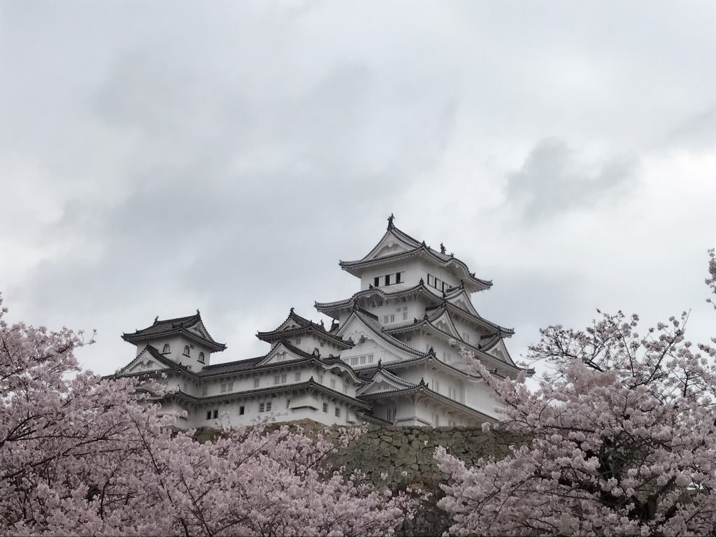 2017年の思い出④(姫路城と桜)